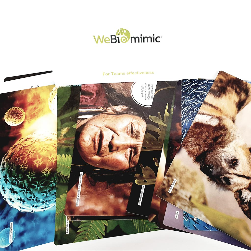 WeBiomimic® for Team